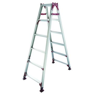 Aluminum Ladder with Adjustable Leg