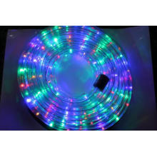 Ce RoHS Approved Christmas Strip Light (SRRLS-2W)