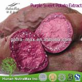 Hot Seling Purple Sweet Potato Extract Powder 4:1~20:1--NutraMax Supplier