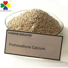 Plant Growth Regulator Prohexadione Calcium 10 Wdg