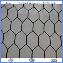 Rede de arame galvanizada revestida do PVC (TS-J002)