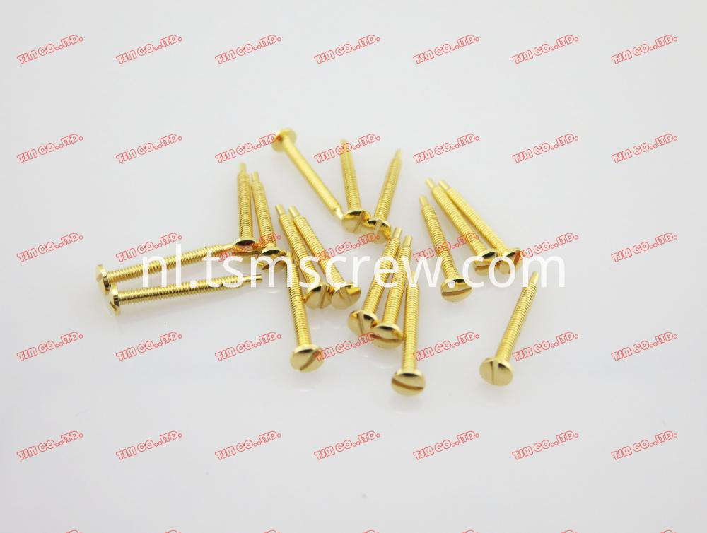 TSM GOLD SELF TAPPING SCREW