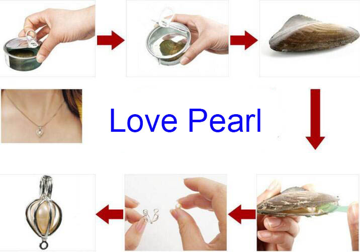 Love Pearl Application Step