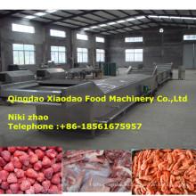 Máquina de descongelación para carne congelada, mariscos, fruta
