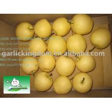 Vender 2010 Su Pears