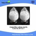 Supply Sterile CAS 69-52-3 Ampicillin Sodium with