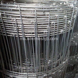 Pagar Galvanized Field Hot Screw Netting