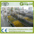 Full Automatic Stainless Steel Pasteurization Tunnel