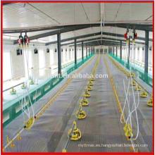 materiales / equipos / productos / casa / diseño / sistema de cultivo de pollo