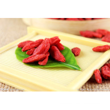 Ningxia Dried Goji Berry Supply