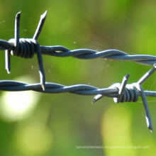 Best price pvc hot dipped galvanized high security double strand barbed wire galvanized fencing