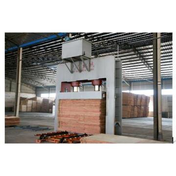Linhas de produção de placa de contraplacado de modelo de construção