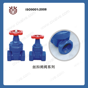 small size Screw cast iron resilient seated sten gate valve