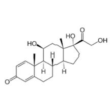 comprimés de prednisolone pour chats