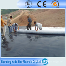 0,3 mm HDPE Geomembrane Liner für Build Pool