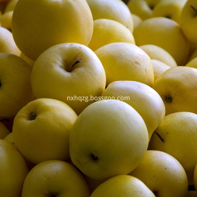 Golden Delicious 80 Specifications