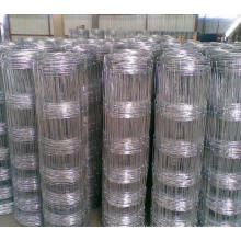 Galvanized Grassland /Field Cattle/Sheep Square Wire Mesh Fence
