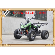 Brushless Electric ATV 4000 W