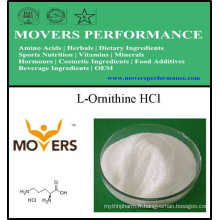 Factory Supply Amino Acid Food Grade L-Ornithine HCl