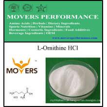 Fábrica de Aminoácidos Alimentação Grade L-Ornitina HCl