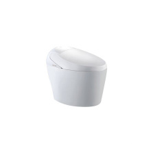 High end European standard water pressure and temperature adjustment specialized toilets with warm automatic toilet seat