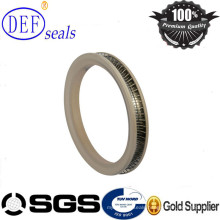 High Pressure Seal Spring Energized Seals