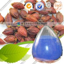 Extrait de nourriture E30-E200 80 Mesh Gardenia Blue Powder