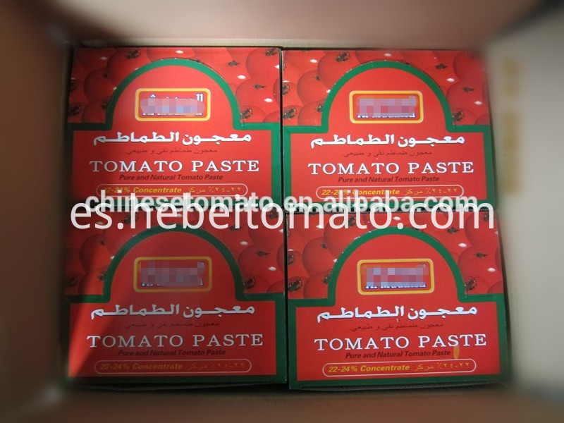 Al-Mudhish Brand Tomato Paste