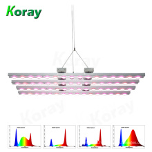 1000W Full Spectrum COB LED Grow Light for Medicinal Plants