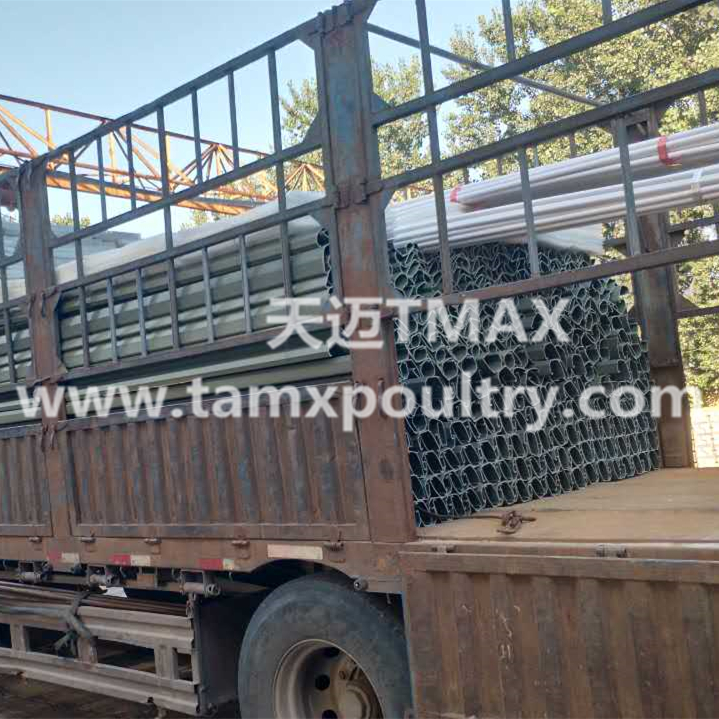 Feed Trough Poultry Farming Equipment