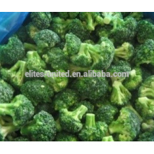 IQF brocoli surgelé avec bonne qualité et prix chaud