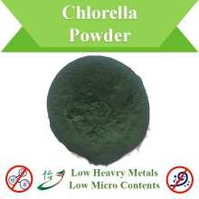 Low Heavy Metals Micro Inhalt Chlorella Pulver