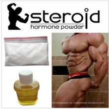 Hormonetas vendedoras calientes de Estradiene Dione-3-Keta para el levantamiento de pesas CAS 5571-36-8