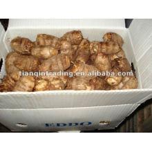 dried taro exporter