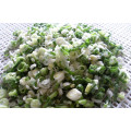 IQF frozen scallion cut