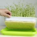 Seedling Starter Hydroponic Microgreens Grow Tray On Sale