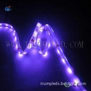 Best price 12v smd led strip lights 3528