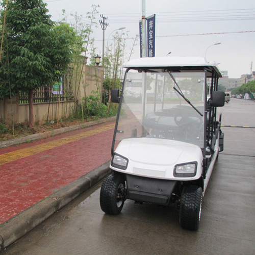 Golf cart for sightseeing tourist transportation