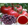 Pigment naturel 10%, 20%, 30% Extrait de tomate lycopène