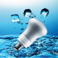 18W R63 CFL Light Bulb with Energy Saving (BNF-R63)