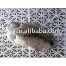 Замороженная рыба каракатицы