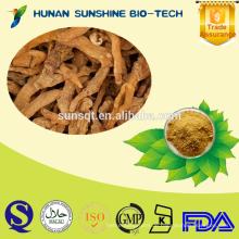 Heißer Verkauf Solomonssiegel PE-Pulver 10% -40% Polysaccharide