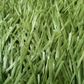Long Service Life Durable Green Cricket Artificial Grass