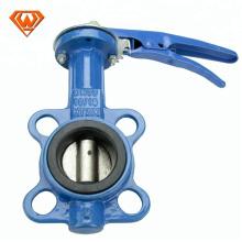 4-Zoll-Flansch Sanitär-Duktile Eisen-Wasser-Absperrklappe