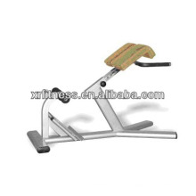 Heiß heiß heiß !!! Rücken Hyperextension / Fitnessgeräte