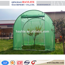 planta de jardín verde casa PE HLT