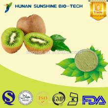 China Supplier Natural Nahrungsergänzungsmittel chinesischen Stachelbeerextrakt
