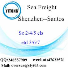 Shenzhen Port LCL củng cố cho Santos