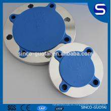 Brida forjada del acero inoxidable del tubo de DIN / EN / ANSI B16.5 para oil.gas
