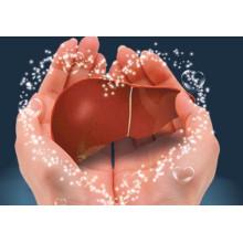 (Cimetidin) --- Behandlung von Magengeschwür Cimetidin
